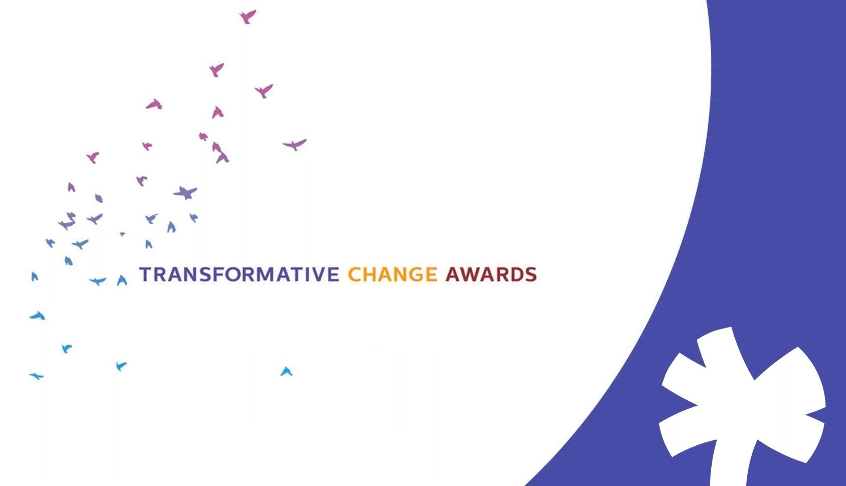 Transformative Change Awards with banner graphics of birds and Alliance logo in white